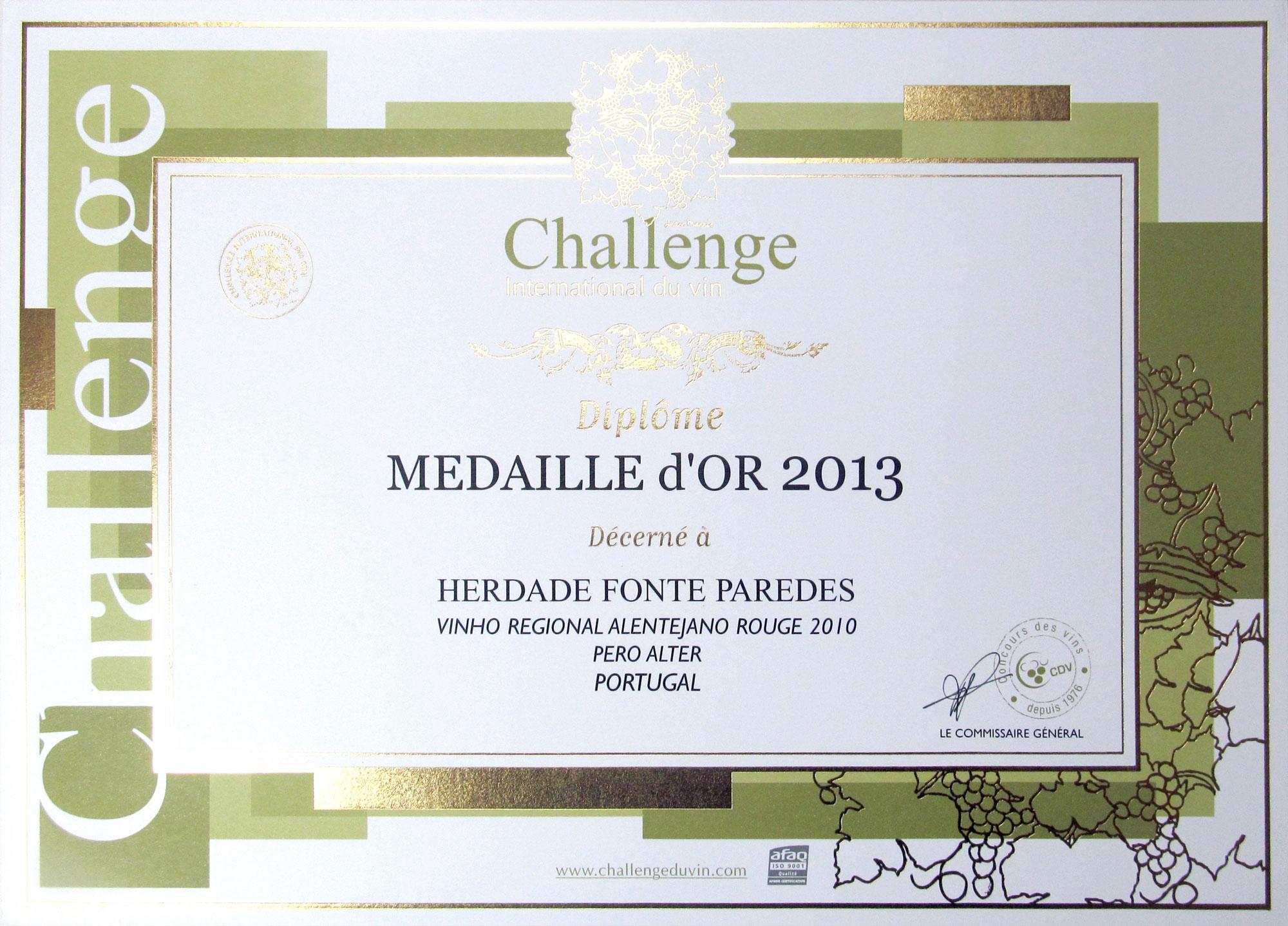 Medalha de ouro 2013