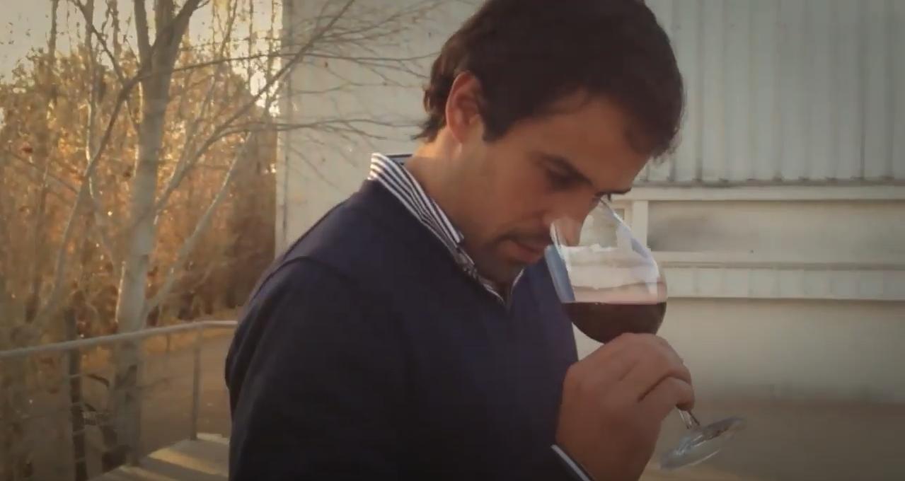 Os nossos vinhos tintos